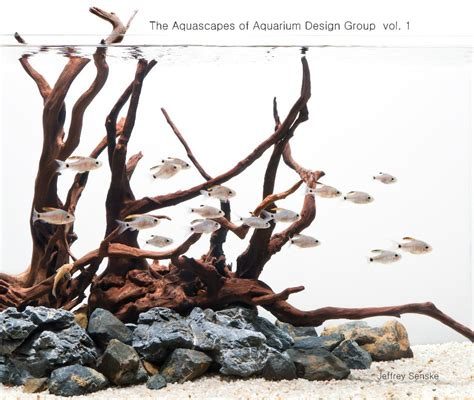 aquarium design group discus the aquascapes of aquarium design group vol 1 by jeffrey