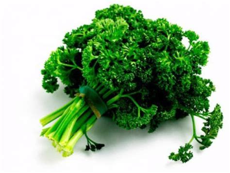 Detox Kidneys With Parsley by 22 Best Images About Kidney Stones Remedies On