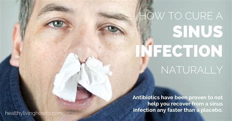 Sinus Cure how to cure a sinus infection naturally healthy living