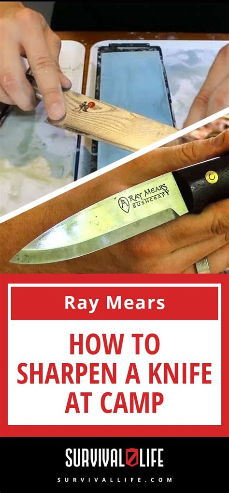 how to sharpen your knife skills in the kitchen and knife safety tips how to sharpen a knife at c family survival headlines