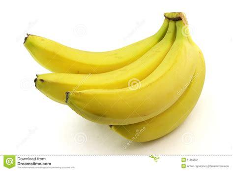 Sweet Banana sweet banana gallery