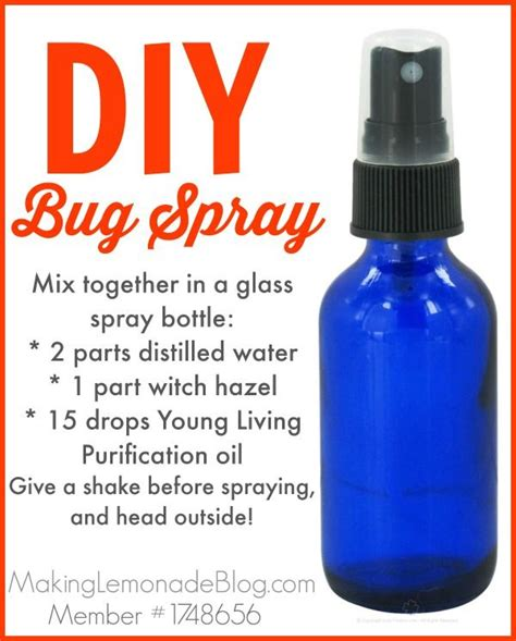 diy bed bug spray homemade outdoor cing spray bugs hate it bug