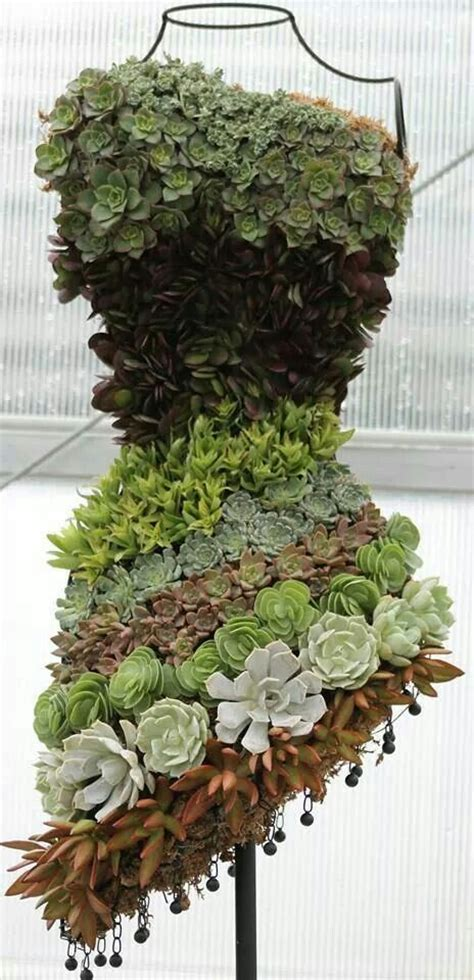 five exles of succulent plants growing on mannequin