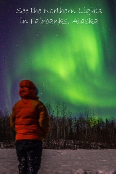can you see the northern lights in fairbanks alaska 8 things to do in fairbanks alaska in the winter