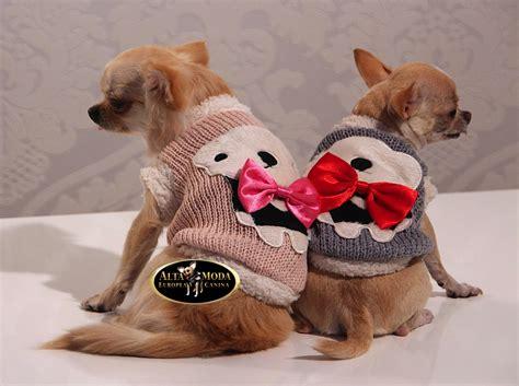 imagenes de invierno con animales ropa para perros peque 241 os moda canina online alta moda