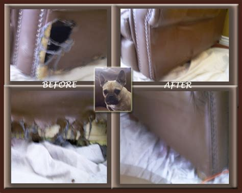 hole in leather sofa how do you fix a hole in leather sofa scandlecandle com