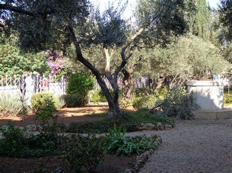 Garden Of Today The Garden Of Gethsemane Day 9