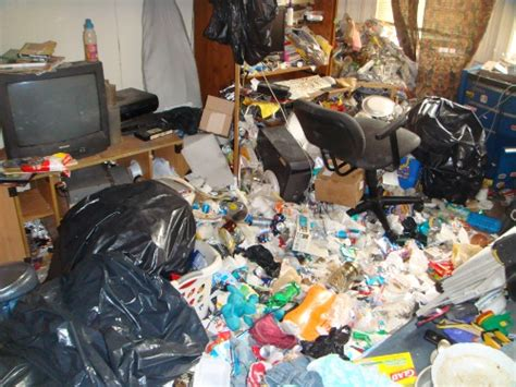 how to clean your living room house cleanout new york trash it man
