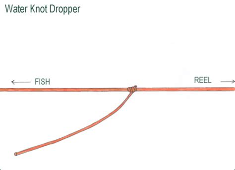 water knot how to tie the water knot rescue knots fishing knots the water knot