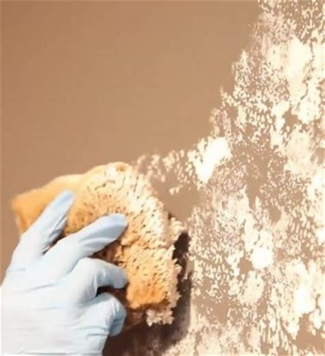 Painting Techniques Interior Walls by Best 20 Sponge Painting Ideas On Textured