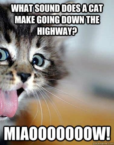 Bad Kitty Meme - what sound does a cat make going down the highway miaooooooow bad joke cat quickmeme