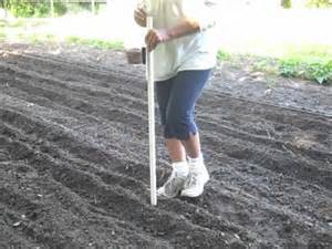 seed planter