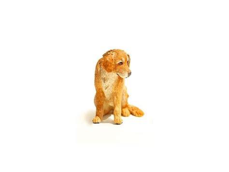 golden cocker retriever price range golden retriever miniature animal sculptures by artist leslie frick