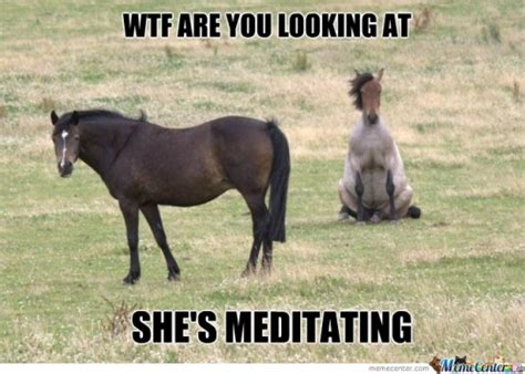 meditation memes best collection of funny meditation pictures