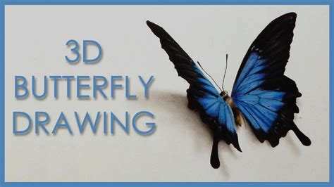 How To Make A 3d Butterfly Out Of Paper - drawing a 3d butterfly anamorphic illusion