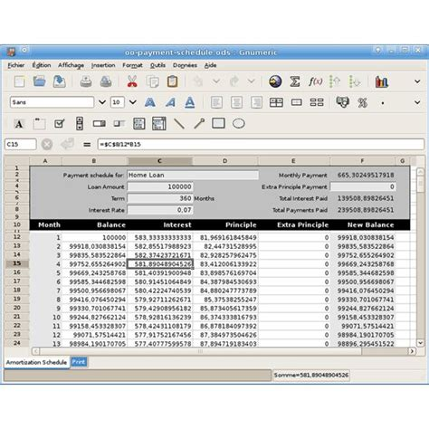 software template five exles of spreadsheet software for windows