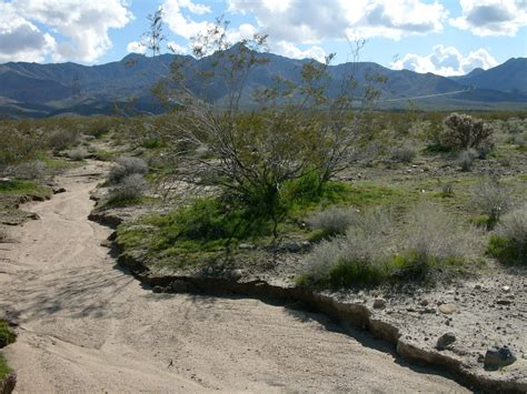 river bed file dry river bed in california jpg wikimedia commons