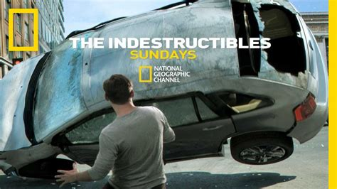 The Indestructibles the indestructibles national geographic