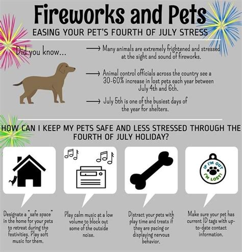 how to comfort dogs during fireworks 17 best images about useful pet info on pinterest