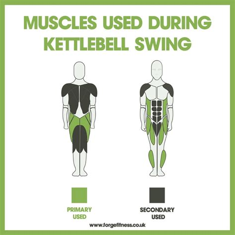 what muscles does kettlebell swing work burn fat during fast