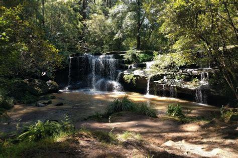 balaka falls  bushwalks  hunts creek reserve carlingford parraparents
