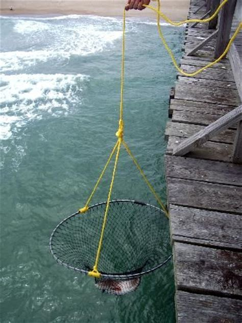 pier fishing net pinterest the world s catalog of ideas