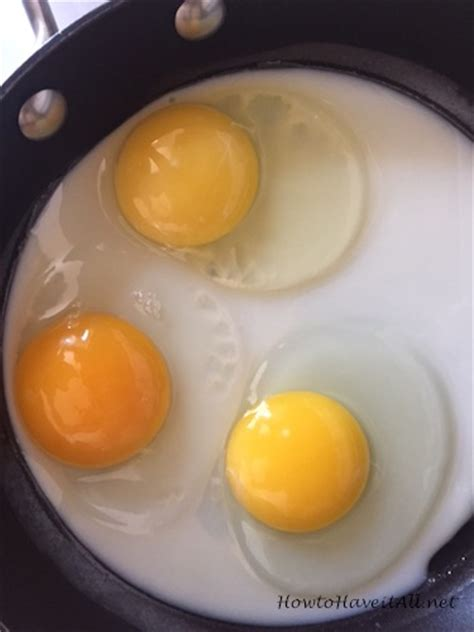 egg yolk color differences in egg yolk color how to it all