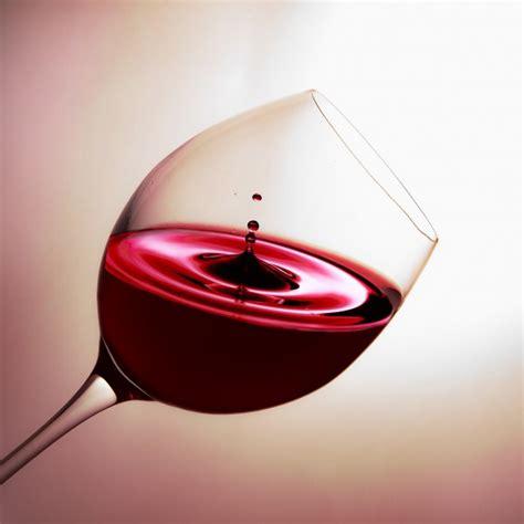 fare il vino in casa data 24 news d informazione con notizie e