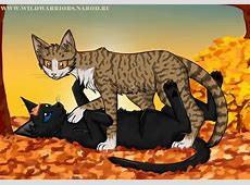 Warriors: Leafpool's Wish. Chapter 3 by Do-omed-Moon on ... Leafpool And Crowfeather Mating