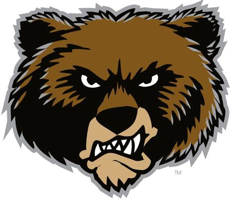 grizzly boats logo 185 best possible fantasy football logos images on