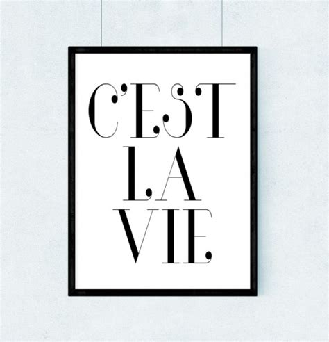 Plakat A3 Wymiary by Plakat C Est La Vie A3 Plakaty Pakamera Pl
