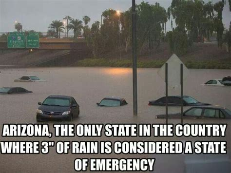 Monsoon Meme - 105 best meanwhile in arizona images on pinterest ha