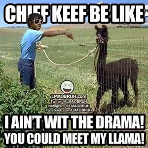 Chief Keef Memes - chief keef music pinterest funny shit funny pics
