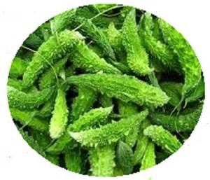 Green Corner Kitchen - karela chutney recipe karela recipes how to cook karela