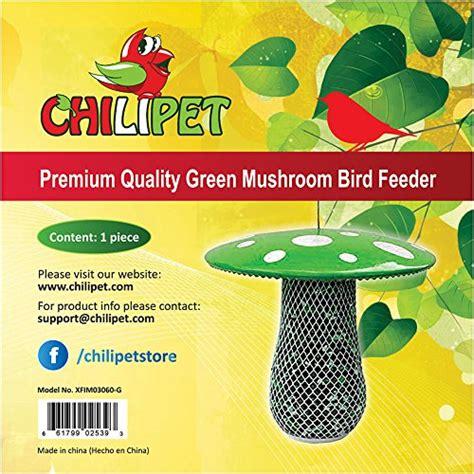 the best bird feeder to attract more wild birds suitable
