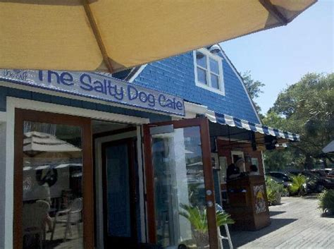 salty cafe salty cafe