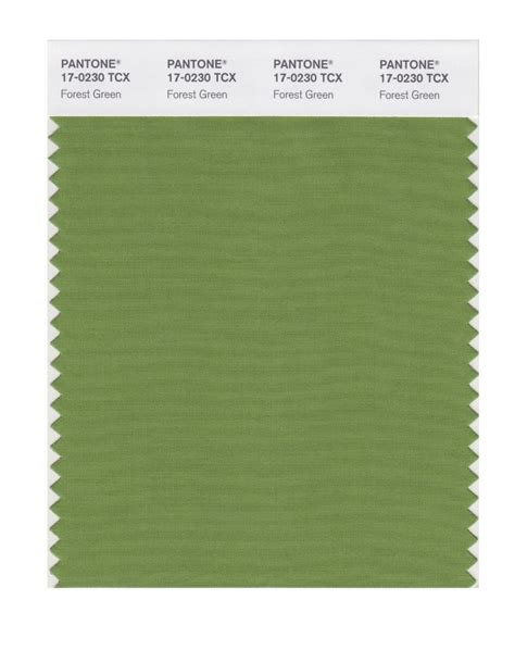 forest green pantone 1000 images about zeleno forest cactus cedar green