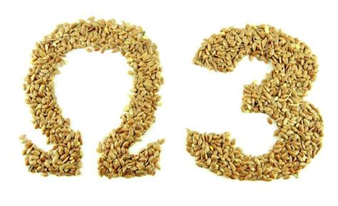 lista de alimentos con omega 3 alimentos con omega 3 qu 233 es