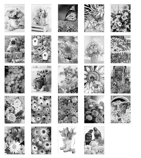 grayscale coloring blossom shading grayscale photo coloring book for grown ups