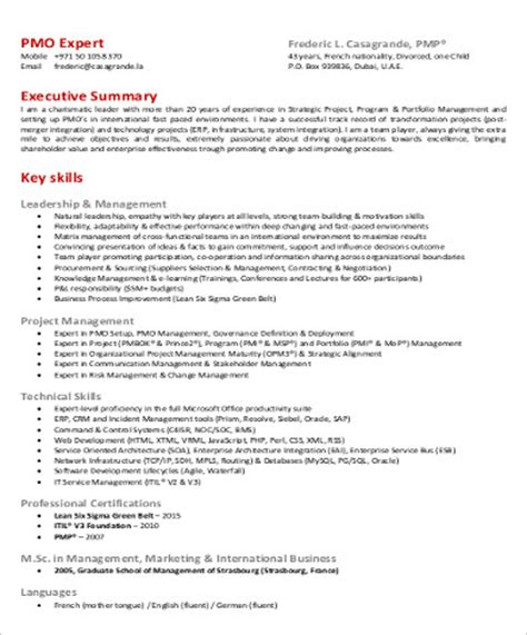 sound report template new 15 project executive summary template
