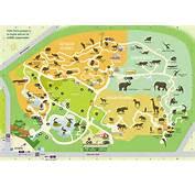Perth Zoo  Compare Cheap Car Hire &amp Save