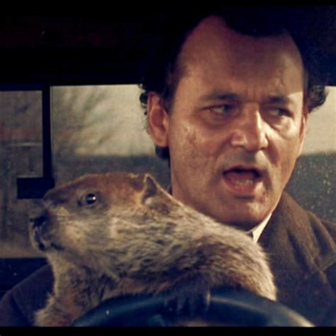 groundhog day driving 8tracks radio don t drive angry 12 songs free and