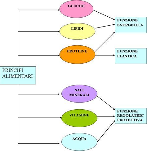 chilocalorie alimenti i principi nutritivi mangiare e sapere