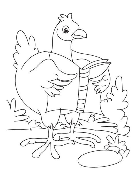 chicken dance coloring page 1000 images about a crafts chickens 4 tam color on