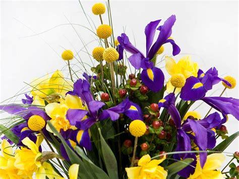 fiori primaverili fiori primaverili elenco fiori per cerimonie fiori di