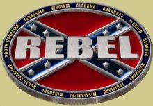 Quot Rebel Surrounded By Confederate States Quot Heavy Cast Epoxy