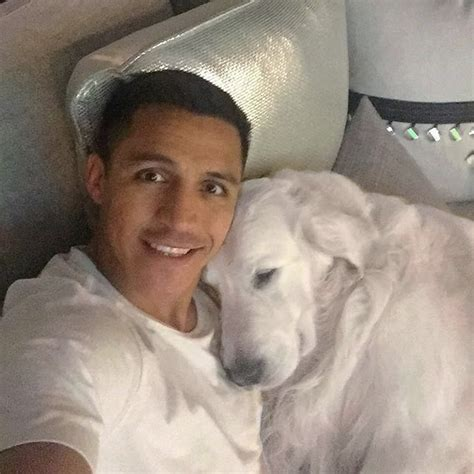 alexis sanchez dogs instagram photo alexis sanchez relaxes with his best friend ahead
