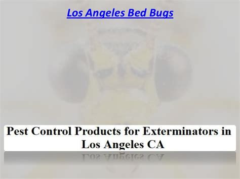 bed bugs los angeles bed bugs los angeles exterminator