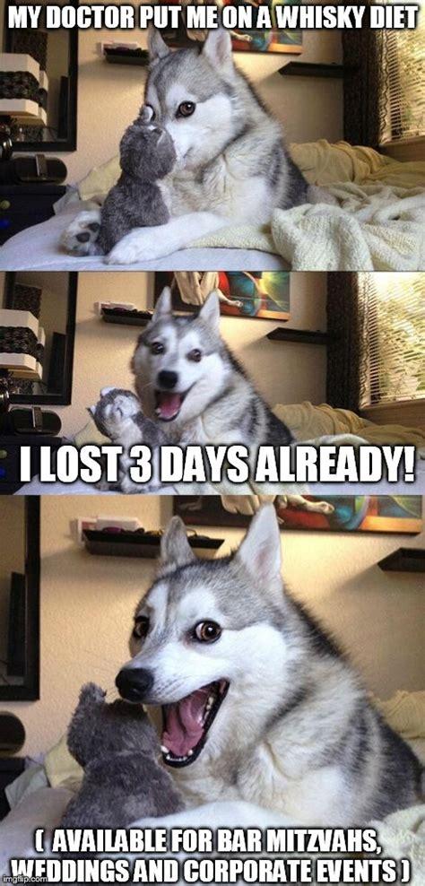 Dog Doctor Meme - bad pun dog meme imgflip