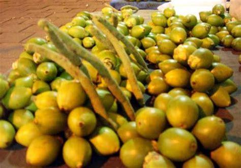 Pinang Kering Jambe pinang cara hidup sehat